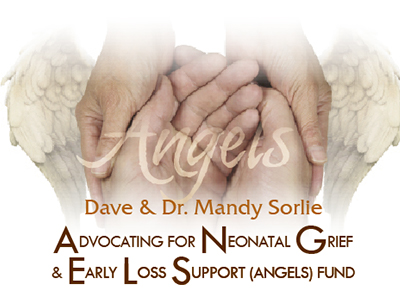 ANGELS fund title Advocating for Neonatal Grief and Early Loss Support