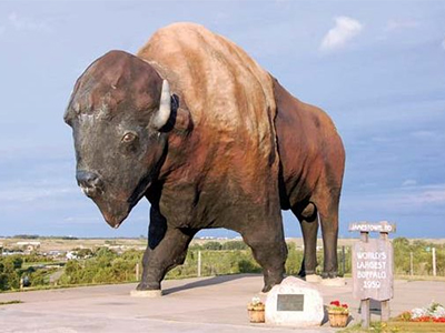 The World's Largest Buffalo in Jamestown, ND